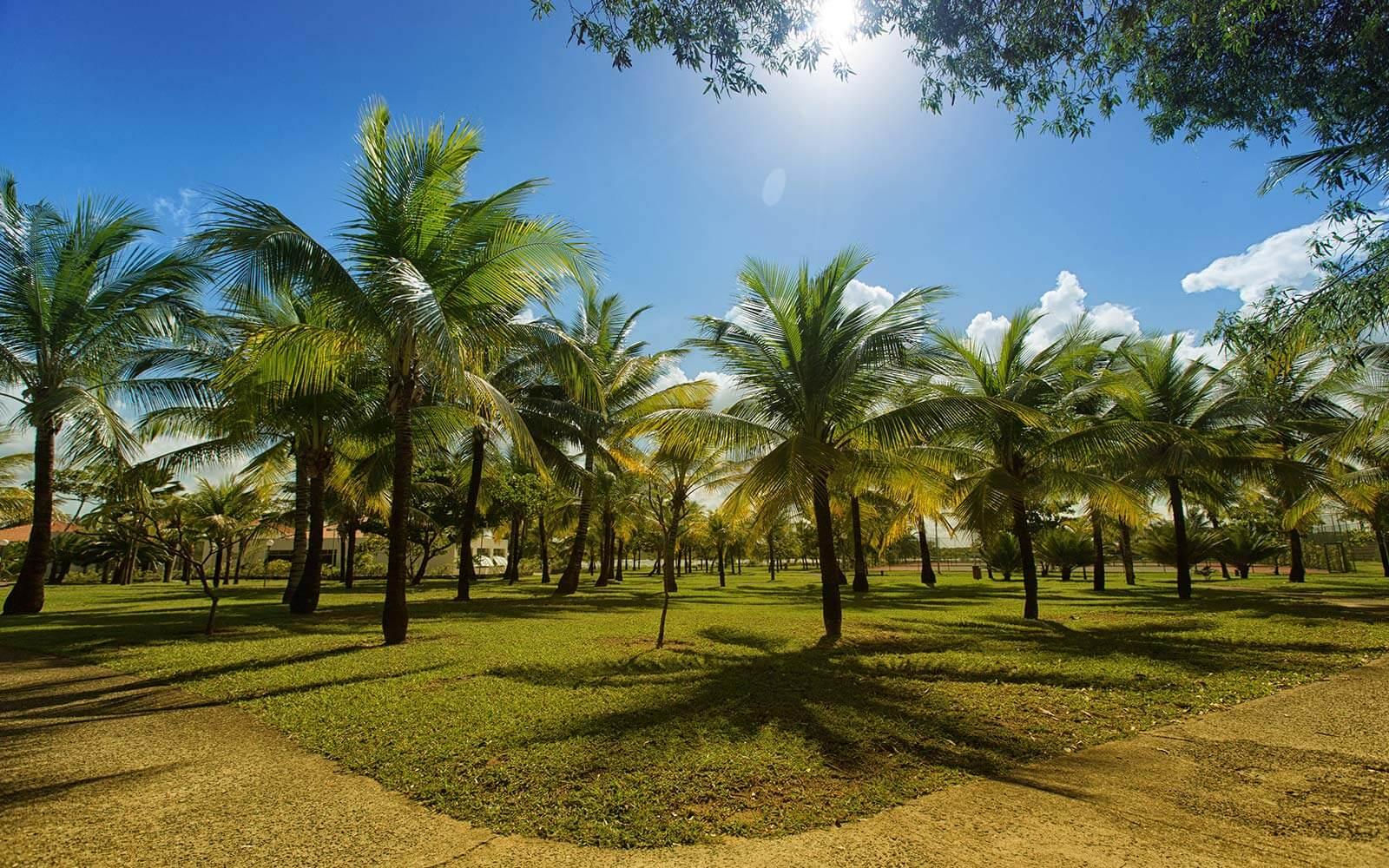 Pacotes Vila Gale Eco Resort Do Cabo Resort All